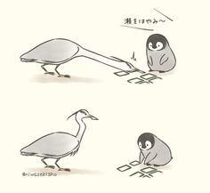 Penguin Cartoon, Penguin Animals, Penguin Art, Cute Cartoon, Funny Animals, Cute Animals, Cute Animal Drawings, Cute Drawings, Animal Doodles