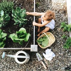 """Simply-Divine-Creation: """" syl tribel """" bub ogrody, dzieci, o Little People, Little Ones, Cottage Garden Design, Country Life, Country Living, Belle Photo, Future Baby, Garden Landscaping, Potager Garden"""