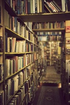 However the world 'evolves,' I will always hold that this is what a used bookstore should look like inside. <----YES