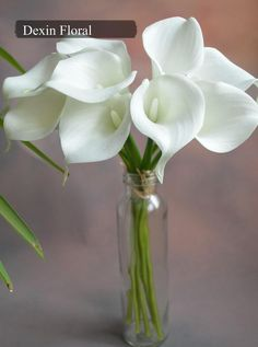 9pcs  36pcs Natural Real Touch White Calla Lily by DexinFloral, $14.00