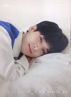 Wonwoo Is Precious ❤️ Woozi, The8, Mingyu Wonwoo, Seungkwan, Hip Hop, Won Woo, Seventeen Wonwoo, Vernon Seventeen, Seventeen Wallpapers