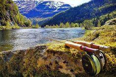 From the last trip to vally of the trout, #Eksingedalen #fluefiske #flyfishing #flyfishingphotography #browntrout #brunørret #dryfly #tørrflue #midge #mygg #nymphfishing #marginata #mayfly #ørret #trout #ilovenorway #ilovenorway_hordaland #visitnorway #fiskeavisen #bergenaktiv #njff #jaktfiskeogfriluftsliv #jfof #sageflyfishing #sageflyfish #tiborreels #picture #photography #photo  @tereksen  @steinfedoy