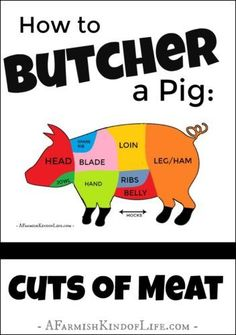 Processing a pig at home but don't know how to separate the cuts of meat? Let me show you how to find (and cut) the bacon, ham, chops, and ribs! - How to Butcher a Pig: Cuts of Meat - A Farmish Kind of Life gerichte meat cuts dishes loaf recipes Meat Butcher, Butcher Shop, Pig Farming, Backyard Farming, Self Reliance, Living Off The Land, This Little Piggy, Raising Chickens, Pigs Raising