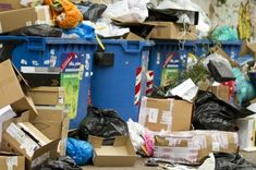 Top 5 Dumpster Diving Tips and more... pictures! Check it out!