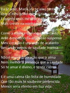 Vinícius de Moraes - ' Soneto da contrição '