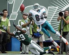 b4d1bbc5a 23 Best Dolphins images