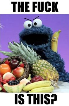 Cookie Monster What The Fuck Is This Shit