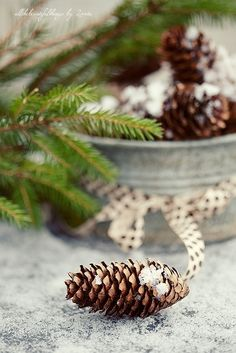 Simple Christmas decorations for bright winter day. Natural Christmas, Noel Christmas, Green Christmas, Country Christmas, All Things Christmas, Winter Christmas, Simple Christmas, Cottage Christmas, Winter Things