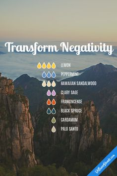Transform Negativity diffuser blend