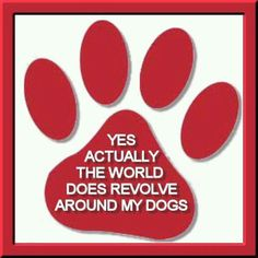 Yes actually the world does revolve around my dogs.