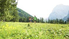 Austria, Mountains, Nature, Travel, Summer Vacations, Places, Naturaleza, Viajes, Destinations