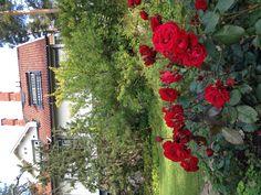 Ainola. September 6, 2012. Home of Jean Sibelius   * http://www.sibelius.fi/english/ainola/index.htm