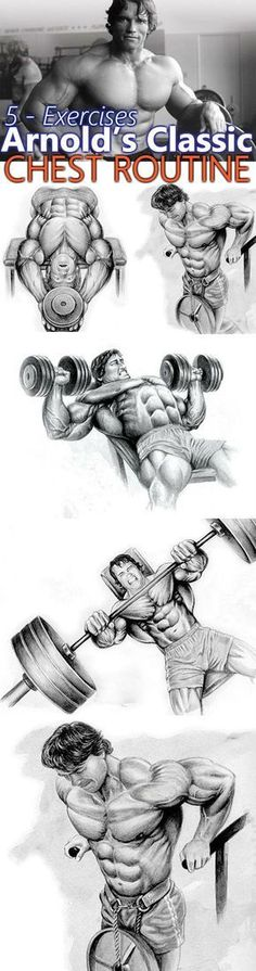 Arnold's Classic 4 Exercise Chest Workout. When it comes to building a massive chest, there's no better authority than the seven-time Mr. Arnold worked hard and heavy to build his chest, training his chest three days a week Fitness Workouts, Weight Training Workouts, Gym Workout Tips, Fitness Tips, Health Fitness, Week Workout, Arnold Workout, Chest Routine, Fitness Studio Training