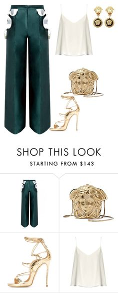 """""""Untitled #4183"""" by teastylef ❤ liked on Polyvore featuring Versace and Raey"""