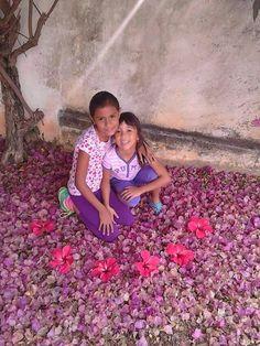 Las Flores....