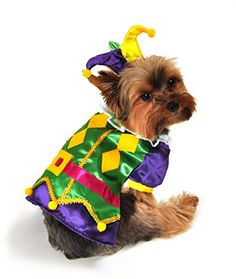 Anit Accessories AP1089L Royal Harlequin Dog Costume * More info could be found at the image url.