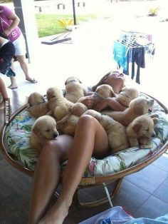 This must be what heaven looks like - 9GAG