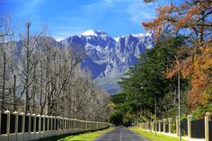 Snow on the Helderberg Somerset West, Mountain View, Snow, Mountains, History, Nature, Gifts, Travel, Historia