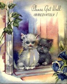 Cat ephemera | EP 4108 | Cats - Vintage Postcards & Ephemera