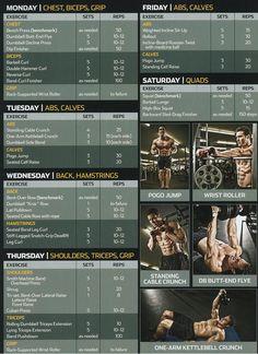 Volume full body 1 week routine  Guys, take it to the gym!