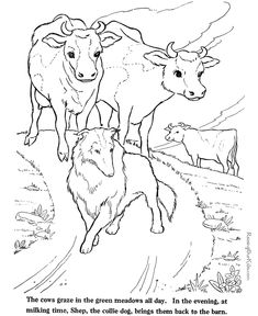 Farm Animal coloring page – Cows to print and color Farm Animal coloring page… – Nutztiere Camping Coloring Pages, Dance Coloring Pages, Farm Animal Coloring Pages, Free Adult Coloring Pages, Coloring Pages To Print, Colouring Pages, Coloring Books, Kids Colouring, Coloring Sheets