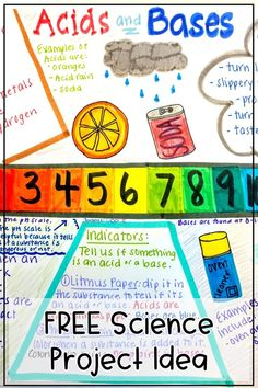 One-pagers are fun activities that have students fill up an entire sheet with knowledge they gained from a topic. Typically it is used in ELA classrooms but why not science too? Science Topics, Science Student, Physical Science, Science Classroom, Science Activities, Science Resources, Middle School Classroom, Middle School Science, High School