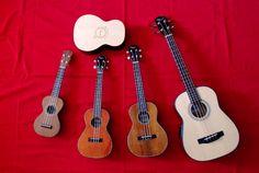 What #ukulele will you add to your collection next? #music #uke #fun Photo Credit: Ukulogics