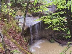 Owens Creek Falls in Claiborne County Rocky Springs, Play And Stay, Natchez Trace, Spring Photos, Beautiful Waterfalls, Weekend Getaways, Garden Bridge, Vacation Spots, Day Trips