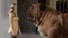 ABC Braces for Deep Impact With 'Idol,' 'Inhuman' Challenges Black Bolt Marvel, Deep Impact, Cartoon Tv Shows, Marvel Women, Online Gratis, American Idol, Live Action, Marvel Universe, X Men