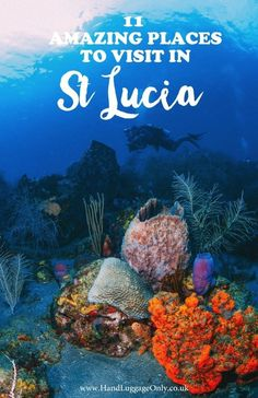 11 Fantastic Places To Visit In The Caribbean Island Of St Lucia lucia honeymoon 11 Best Things To Do In St Lucia Cool Places To Visit, Places To Travel, Travel Destinations, Holiday Destinations, Vacation Places, Cruise Vacation, Vacation Spots, St Lucia Honeymoon, Cheap Honeymoon