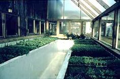 A gray water greenhouse in Massachusetts, supplied by a Clivus gray water system.