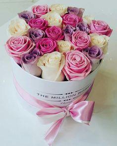 rose afbeelding
