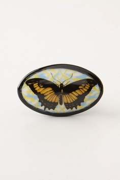 Edgar Berebi Decorative Hardware Butterfly Knob Light Colorado Light ...