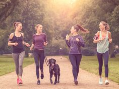 Dogs make great running partners, but training them can be a bit tricky. These four tips will get Fido ready to hit the ground running.