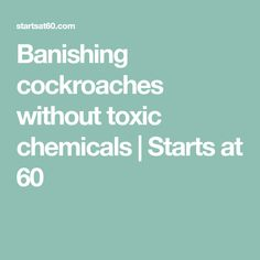 Banishing cockroaches without toxic chemicals | Starts at 60