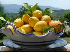 Lemon Head, Harvest Basket, Italian Lifestyle, Capri, How To Squeeze Lemons, Sicilian, Fruit Trees, Fresh Fruit, Serving Bowls