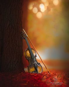 Blur Photo Background, Smoke Background, Iphone Background Images, Best Background Images, Violin Photography, Cute Photography, Photography Backdrops, Music Backgrounds, Photo Backgrounds