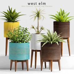 west elm mid century planter model flower is textures low-poly ready for VR, accurately design for perfect visualization West Elm Mid Century, Types Of Texture, Decorative Planters, 3d Visualization, 3d Models, How Beautiful, Decoration, Planter Pots, Pure Products