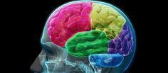 THC contra el Alzheimer