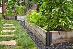 Raised vegetable garden beds make vegetable gardening less work. Learn the benefits of raised-bed gardening, how to build a raised garden bed, and raised vegetable garden design tips. Vegetable Garden Planning, Backyard Vegetable Gardens, Vegetable Garden Design, Veg Garden, Raised Garden Bed Plans, Building A Raised Garden, Raised Beds, Fall Vegetables, Growing Vegetables