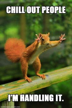 How do you deal with stress at the workplace? | Funny Squirrel