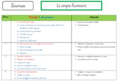 Le corps humain : os, articulation, muscle