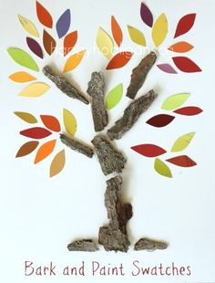 Fall tree crafts with tree bark and paint swatches