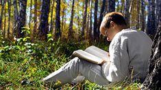 Books for Boys - Advanced Readers