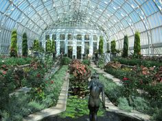 Como Park Conservatory #healingplaces