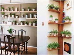 Há muitas formas de incluir flores e plantas na decoração de sua casa sem ter de usar os costumeiros e aborrecidos vasos. Qualquer sala pode apresentar um