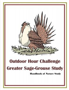 Sage grouse nature study Grouse, Study Ideas, Nature Study, Sage, Challenges, Birds, Outdoor, Outdoors, Salvia