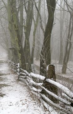 Snowy fence (North Carolina mountains near Maggie Valley) by Entropyd