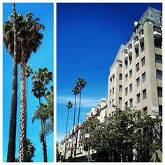 Ktwn the the new mecca!  #womanisttravel #calilove #lalovesart  #lalovestory #lalovesyou #wilshire #ktown #ktownmecca #anyeong #annyeonghaseyo #dtla