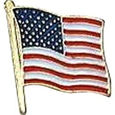 US Flag Store USA Flag Lapel Pin Standard Flag Series 3 with Longer Pole